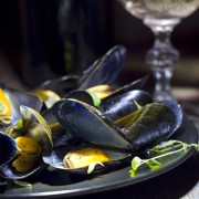 oysters mussels