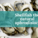 Oysters are a well-known aphrodisiac